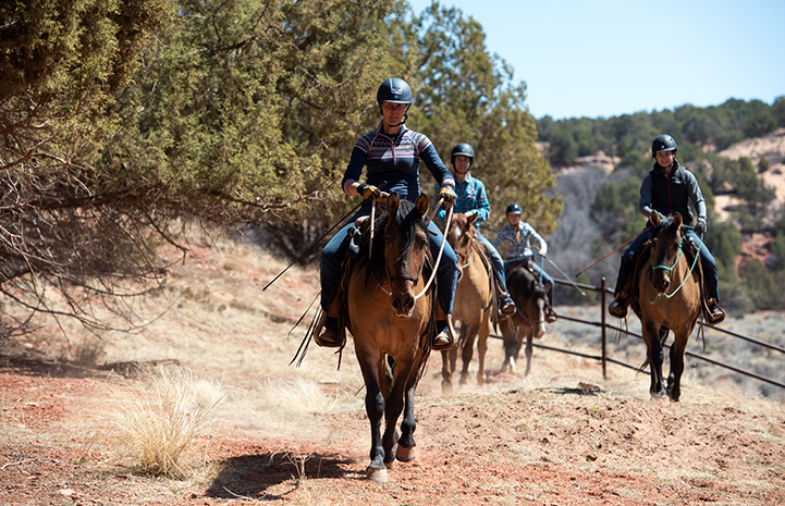 Group of people riding horses outside on a trail