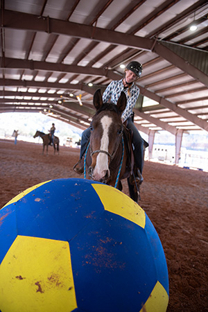 Person riding a horse with a giant blue and yellow play ball in front of them