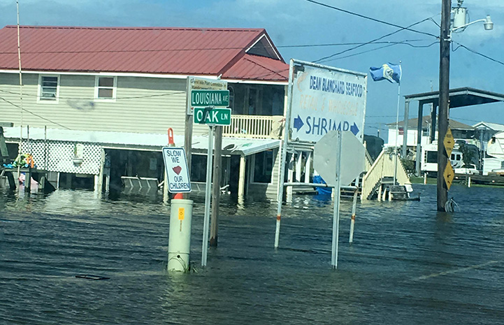 An area of town that's flooded under water