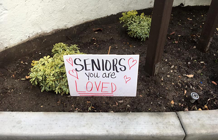 """Seniors You Are Loved"" sign in the soil next to some bushes"