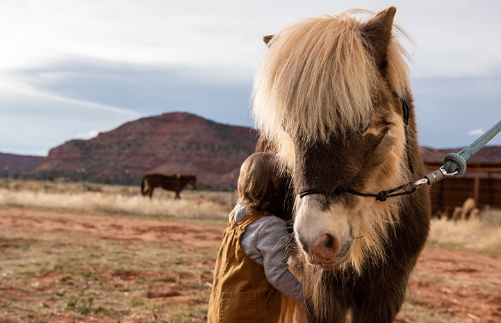 Young girl hugging Phantom the mini horse while out in a field