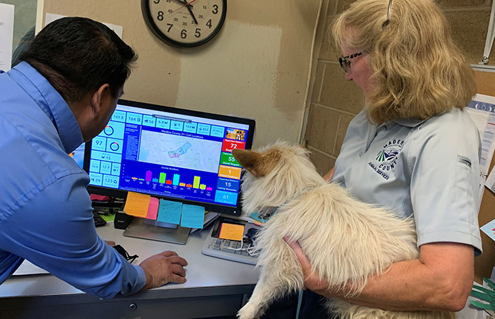 Two Madera County Animal Services employees looking at a computer, one holding a small fluffy dog