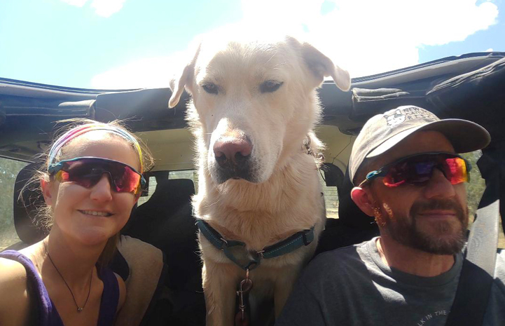 Dog sitting between two people in a car