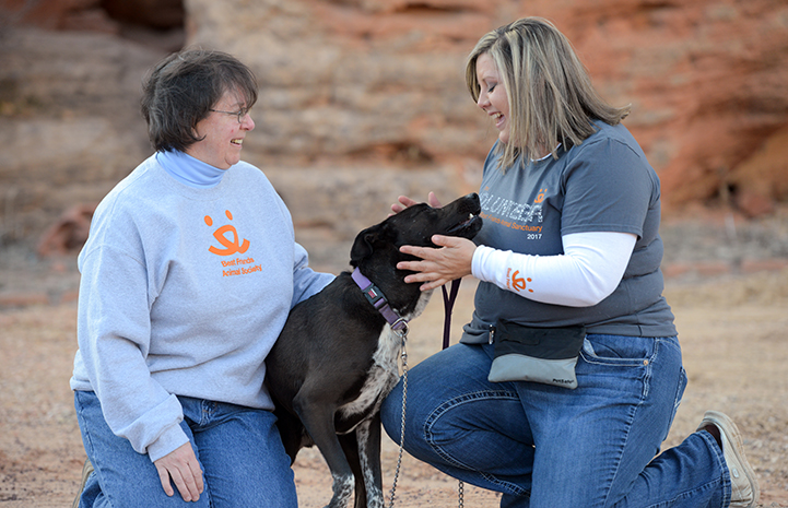 Dogtown caregivers and trainers work with Castiel to help bring some peace to his life