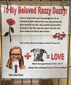 Razzy Dazzy the dog's love letter at LifeLine Animal Project