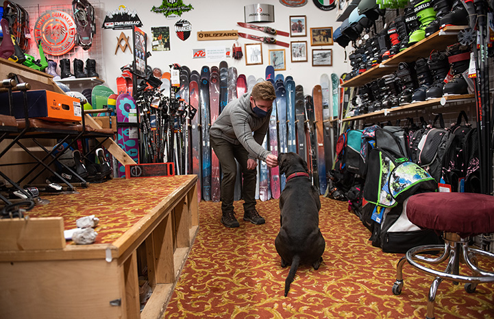 Man wearing a mask giving a treat to Dakota the dog in the ski shop