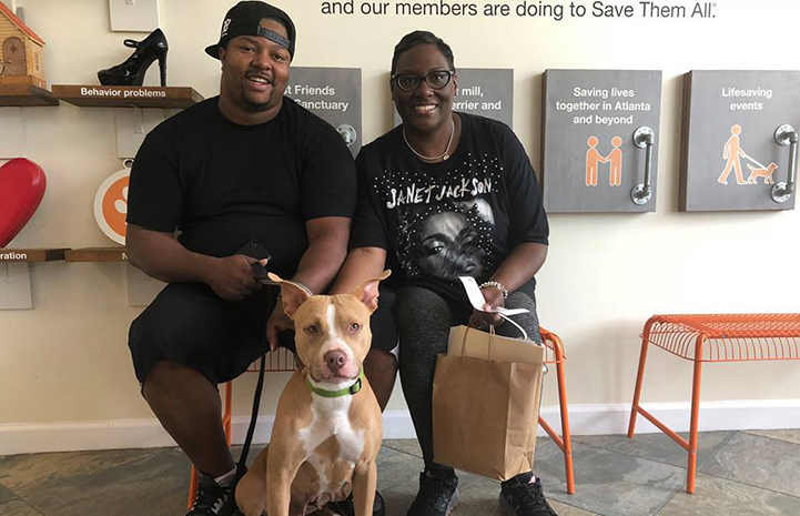 Duchess the dog with her new family