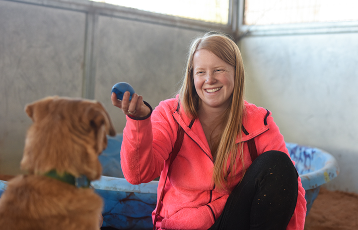 Smiling woman holding a blue ball and a brown dog looking at it