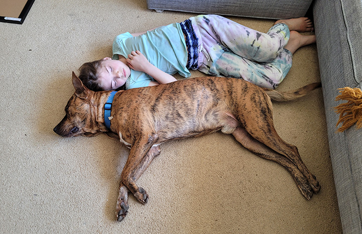 Young boy lying on the floor next to brindle dog Pancho