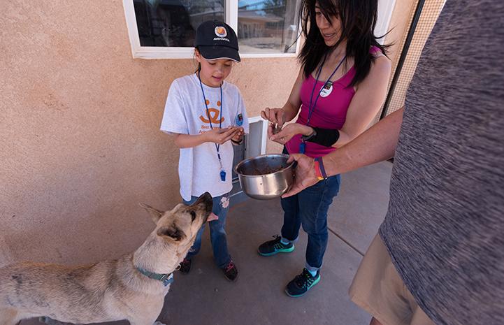 Volunteers helping Wookie eat
