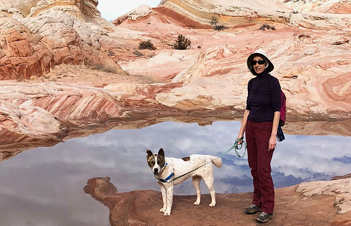 Volunteer Heather Harding with Sun the dog hiking on beautiful rock formations by some water