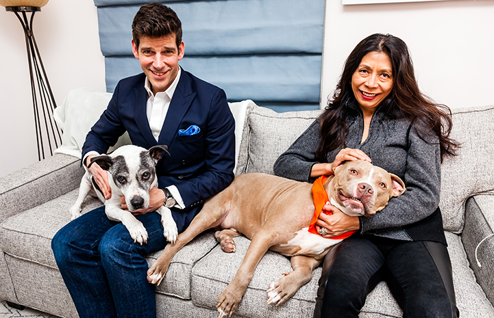 Patrick and Mayda, with their prior dog and Micky their newly adopted brown and white pit bull terrier type dog, on a couch