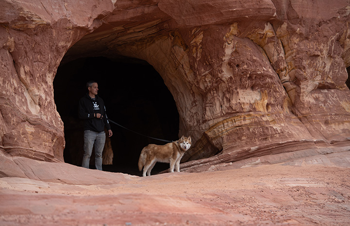Abby the dog on a leash held by a man in a sand cave
