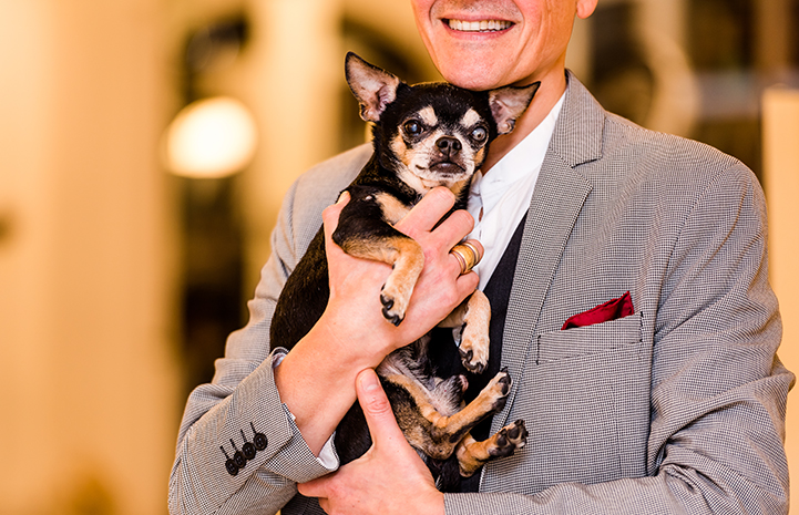 The next day, Lucio stopped by the adoption center and adopted Kikko, the senior Chihuahua