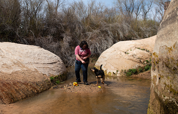 Bombay the dog at a creek with a woman