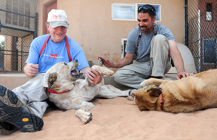 Two male caregivers, Tom and Haven, sitting on the ground petting two dogs, Fred and Express