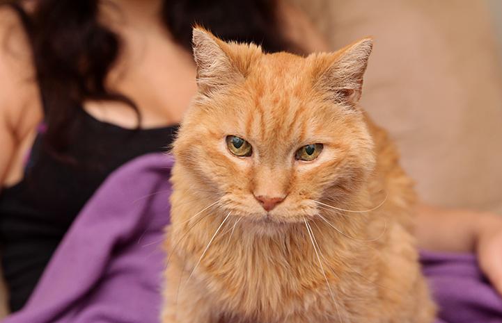 Lionel, age 14