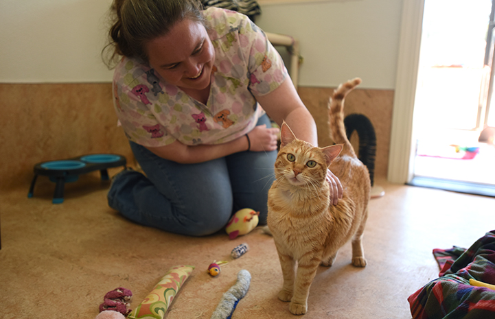 Smiling woman kneeling down to pet Boris, the orange tabby cat with epilepsy