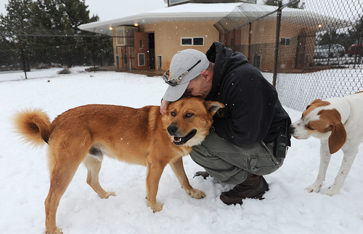 Octagon winter snow with a man hugging a brown dog