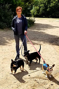 Woman outside walking three small dogs on leashes