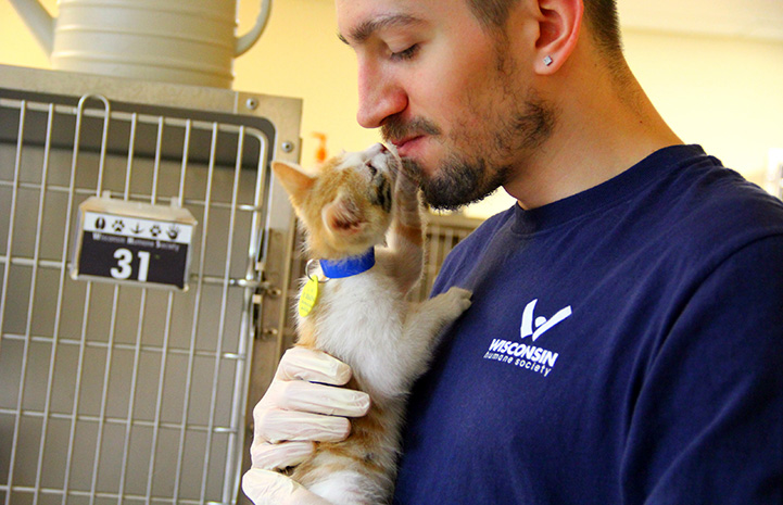A man holding an orange and white kitten who is sniffing his face