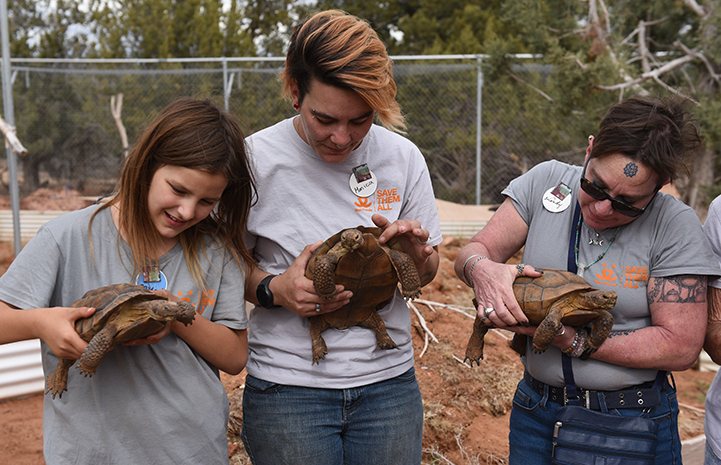 Some members of the Winnick holding tortoises while volunteering at Wild Friends
