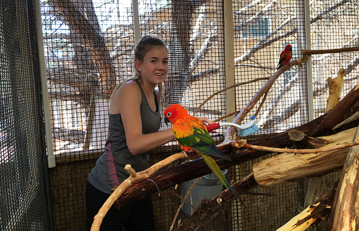 Ashley helping clean in the Adorables Room at Parrot Garden
