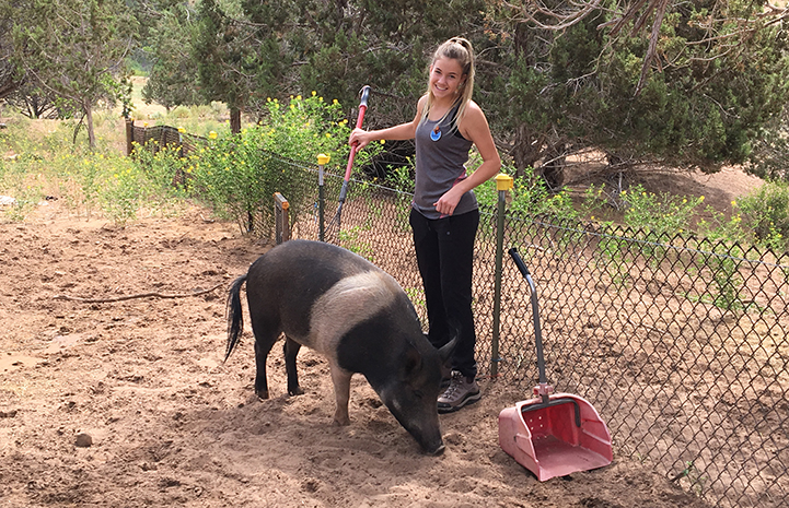 Ashley in Piggy Paradise feeding Holly the pig
