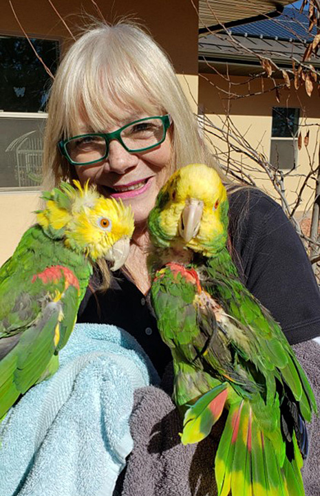 Tami the caregiver with Emma and Emily the parrots with her