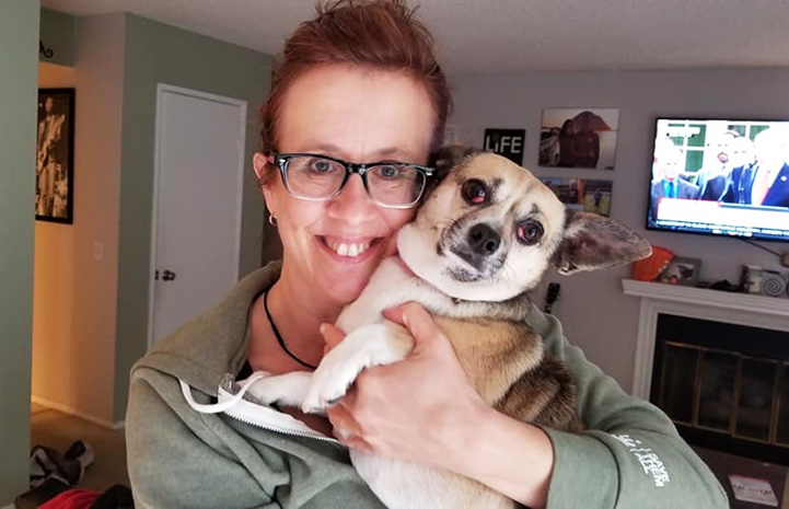 Sugar the foster dog being held by his foster mom