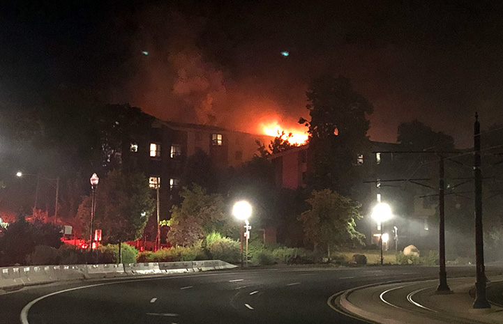 The apartment building on fire