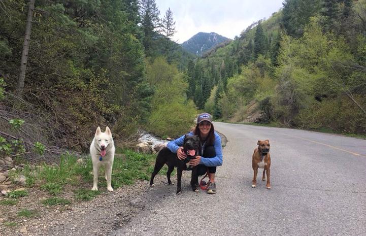 Ashley Tzioumis walking three dogs in a mountainous region