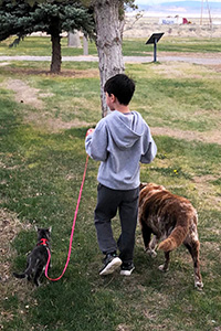 Seven-year-old William walking River the foster dog and a cat