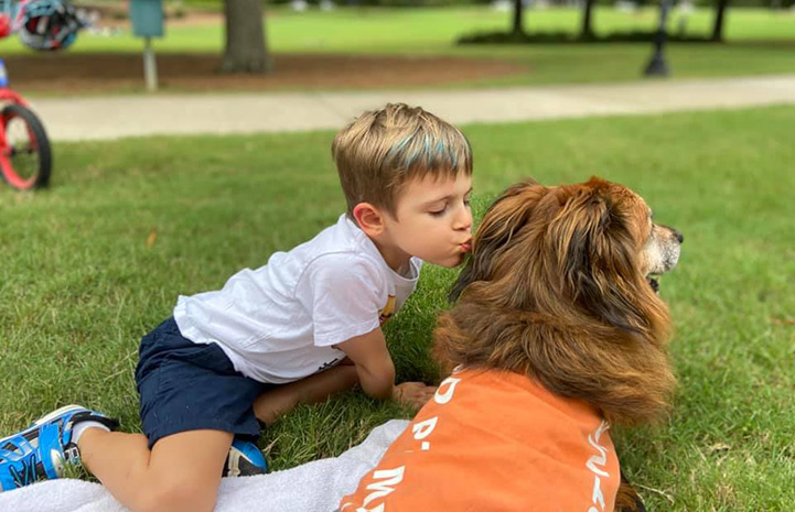 Young boy kissing a brown dog wearing a vest