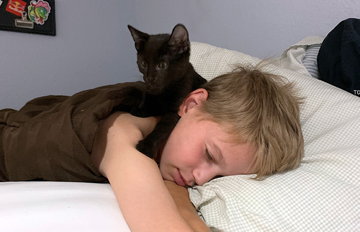 Lucas lying in bed with his kitten VGK on his head
