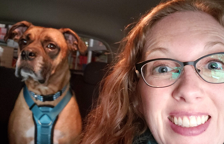 Woman taking a selfie photo in the car with Beau the foster dog in the back seat