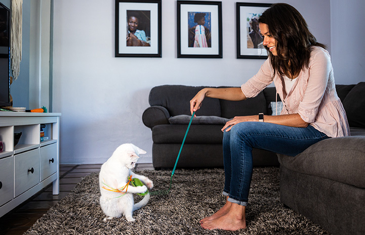 Woman sitting on a couch playing with a cat with a wand toy