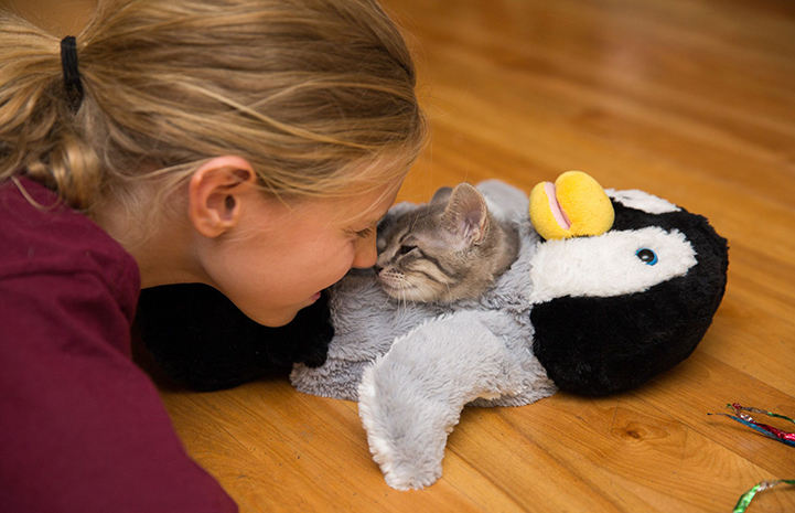 Woman face-to-face with a kitten in a stuffed penguin