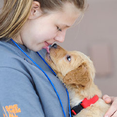 Puppy licking caregiver's chin