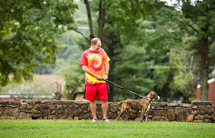 Man in a tie-dyed T-shirt walking a brown and white dog on a leash