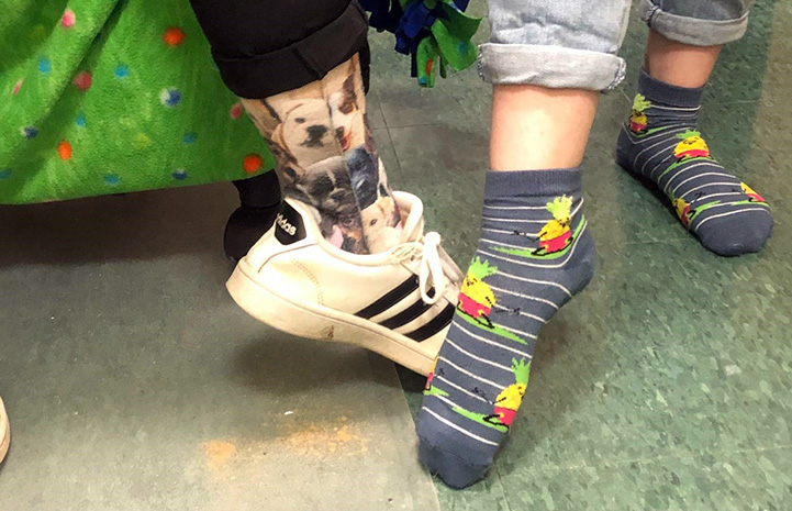 Two people showing off their crazy socks