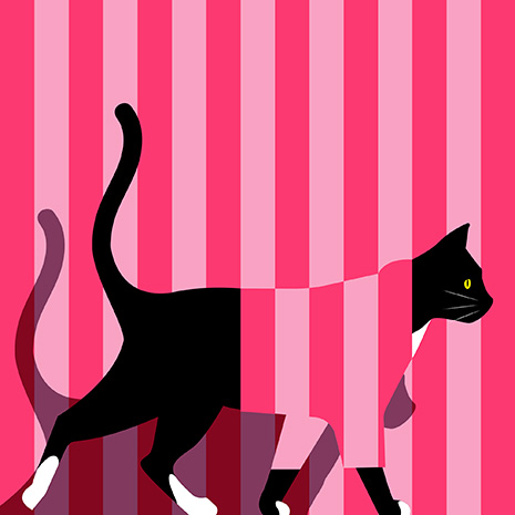 Hero the cat drawing walking and wearing a pink striped outfit with a pink stripped background