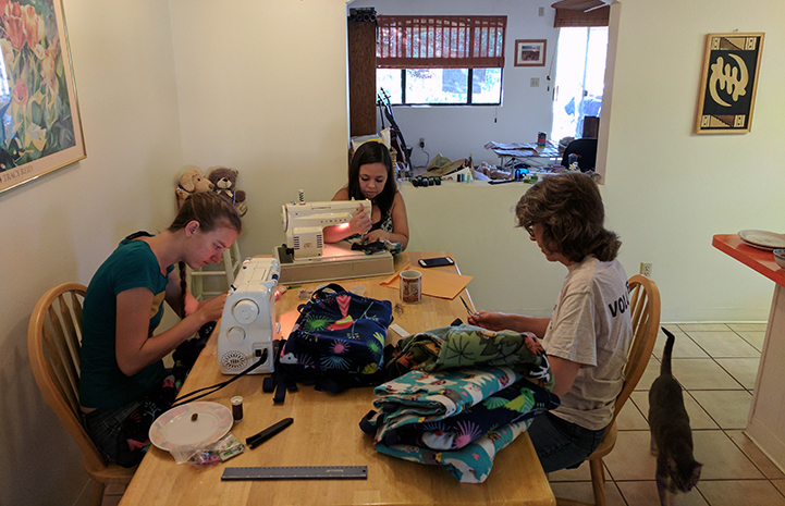 A group of people putting blankets together to be donated to Best Friends