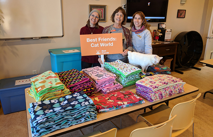 A big pile of blankets donated with Cat World, with staffers standing behind them