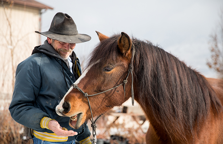 Bob with the horse Daisy, who he adopted