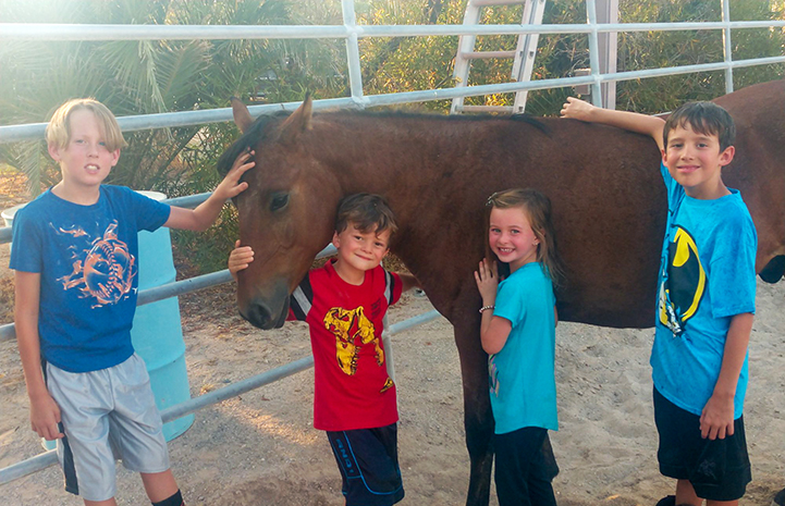 Willie the horse with the four children of his new family