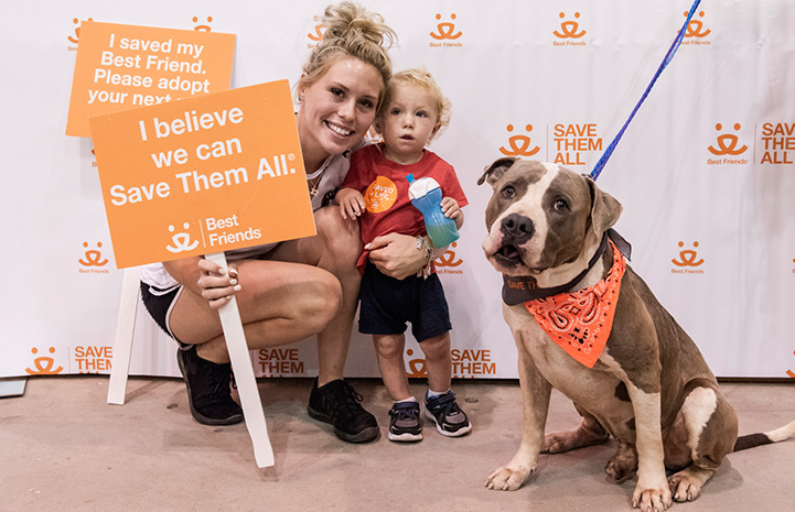 Loki the pit bull terrier mix wearing an orange bandanna gets adopted at the Houston Super Adoption