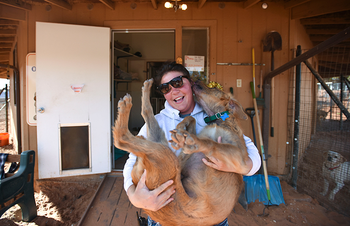 Laughing woman wearing sunglasses holding a brown dog who is licking her face