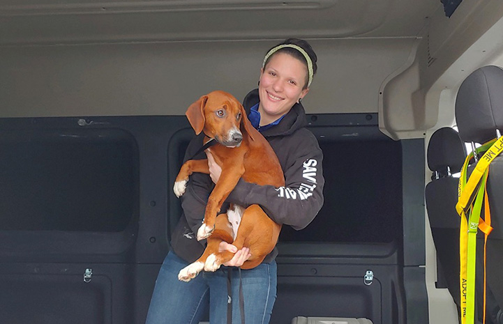 Woman wearing a Save Them All hoodie and headband holding a brown and white dog in a transport vehicle