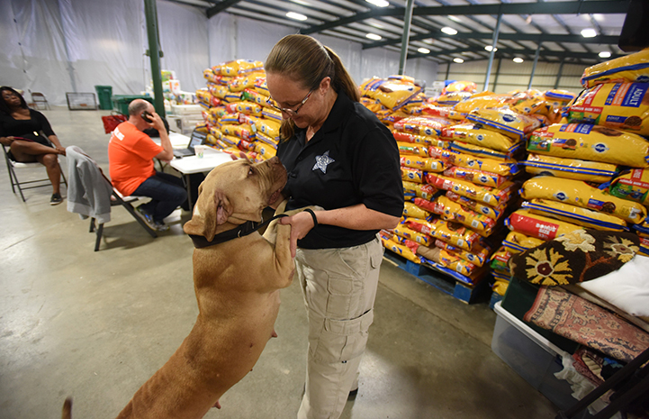 Montgomery County animal control officer with a dog in front of piles of food